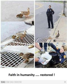 Faith in humanity, restored !