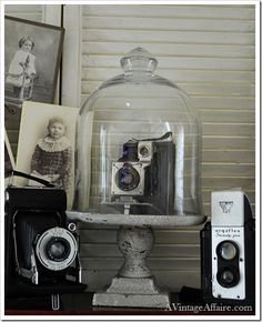 Antique Vintage Decor capturing the moment - vintage cameras and photos - love the cloche oh something to do with my grandpas old camera like the way this looks.
