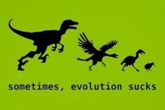 You Think Evolution Is Awesome