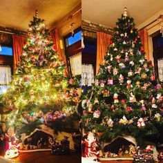 We set up our #christmastree  #christmas #gifts #christmas2015