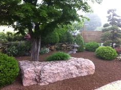 Natural landscaping ideas. Rock garden.  Acero (Maple) - Rocks - Box tree - Flowers