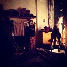 Isla in the nightime