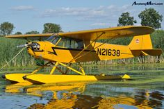 Piper Cub Aircraft History, Specification and Information Piper J3 Cub, Private Pilot License, Piper Aircraft, Bush Plane, Float Plane, Survival Instinct, Private Plane, Flying Boat, Air Planes
