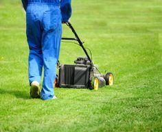 Gödslingsprogram för din gräsmatta