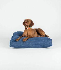 Fillydog Hundebetten