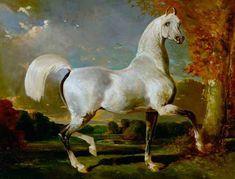 Alfred-de-dreaux -Etalon Arabe. It looks like a Marwani horse.