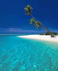 Maldives Vacation, Maldives Beach, Maldives Hotels, Maldives Tour, Maldives Wedding, Maldives Islands, Dubai Beach, Cool Places To Visit, Places To Travel