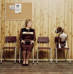 Mature woman and boxer dog looking at each other, in waiting area