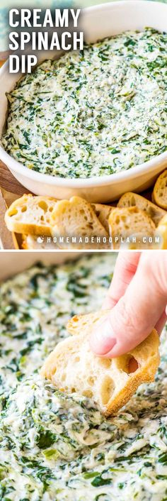 Creamy Spinach Dip! This crowd-pleasing party dip is a creamy blend of sour cream, cream cheese, spinach, and various cheeses and served with bread for dipping. | #ad @shamrockfarms HomemadeHooplah.com