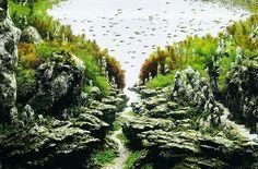 PEDRO HITOMI OSERA: Paraísos submersos
