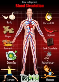 Proper blood circulation in the body is important for optimum health. It is through blood circulation that nutrients, minerals and oxygen get transferred to different parts of the body. Also, proper circulation promotes cell growth and organ function. Poor blood circulation can affect the entire body, including the brain, heart, liver,