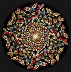 Butterfly by MC Escher