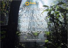 Amronet.pl l love days