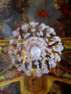 Chandelier in the Hall of Mirrors at the Palace of Versailles Hall Of Mirrors, Palace Of Versailles, French Furniture, Chandelier, Marie Antoinette, Rsvp, Star, Beauty, Candelabra