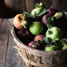 Dreaming. I can't wait to be harvesting baskets of apples making jelly drying slices preserving jars full of summers goodness. #apples #harvest #forage #preserve #jelly #fowlersvacola #ayearofproduce #NatashaMorgan #thesimplethings #countryliving #slowliving #livebytheseasons #imageviapinterest