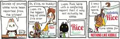Breaking Cat News by Georgia Dunn for Aug 7, 2017 | Read Comic Strips at GoComics.com