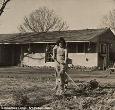 One hundred families were given homesteads in California by the government with nearly an acre of land