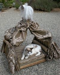 Marie Antoinette Dog Bed in Gold - Beds, Blankets & Furniture - Furniture Style Beds Posh Puppy Boutique