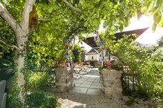 Rustic Summer Wedding @ Müllers Heuriger & Weingut. Plants, Summer, Wedding, Casamento, Summer Time, Flora, Weddings, Plant, Marriage
