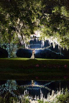Isabelle + Karl   Laytns Land-n Wedding - The Veil Wedding Photography