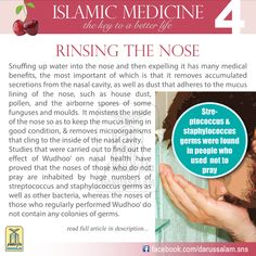 Snuffing up water into the nose and then expelling it has many medical benefits, the most important of which is that it removes accumulated secretions from the nasal cavity, as well as dust that adheres to the mucus lining of the nose, such as house dust, pollen, and the airborne spores of some funguses and moulds.#DarussalamPublishers #IslamicMedicine ~Amatullah♥