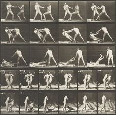 Exposed: Eadweard Muybridge and the Study of Motion, On View May 3 - August 3, 2014