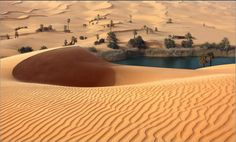 Umm-al-Maa, Oasis, Libyan Sahara