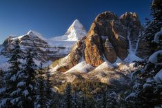Summer hiking & photography guide to Mount Assiniboine Provincial Park in Canada. Best Landscape Photography, Hiking Photography, Photography Guide, Amazing Photography, Hiking Guide, Lake Forest, Canadian Rockies, Ways To Travel, Travel Abroad