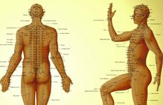 Punctul care poate trata 100 de boli! Ce se intampla daca il masezi? – Zu San Li ‹ Dezvoltare personala si spiritualitate!