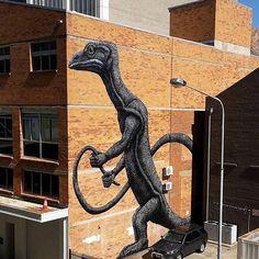 Street Art @GoogleStreetArt. New Street Art by ROA in Townsville, Australia