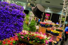 Flormart 2014 - convegno ECOTechGreen