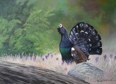 Tetrov Hluchan. Akryl na plátne.  50x70cm. Wildlife Paintings, Bird, Animals, Animales, Animaux, Birds, Animal, Birdwatching, Animais