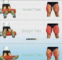 leg extensions as finishers to any good leg programming. The meat and potatoes t… leg extensions as finishers to any good leg programming. The meat and potatoes to legs are always going to be squats but for endurance training such… Continue Reading → Fitness Workouts, Gym Workout Tips, Ab Workout At Home, At Home Workouts, Fitness Tips, Fitness Motivation, Barre Workouts, Workout Partner, Fitness Models