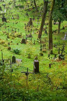 Friedhof der Kuscheltiere??