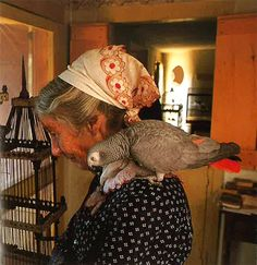 Tasha Tudor and her Grey. Only Tasha Could Do This. Bird People, Life Is Beautiful, Childrens Books, Illustrators, Dame, Love Her, Vermont, The Incredibles, World
