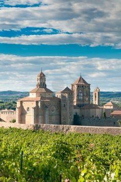 Monasterio de Santa Maria de Poblet y viñedos, Catalunya