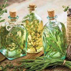 Herbal Gardening Ideas Homemade herbal vinegar is easy to make and customize to your taste. - Homemade herbal vinegar is easy to make and customize to your taste. Flavored Oils, Infused Oils, Spices And Herbs, Fresh Herbs, Four Thieves Vinegar, Herbal Oil, Herbal Teas, Herbal Extracts, Canning Recipes