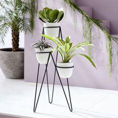 Modern home Indoor Planters DIY