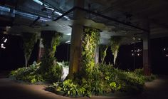 Since underground parks aren't exactly commonplace, non-profit group Lowline has opened an exhibit to give New Yorkers a glimpse of the future subsurface Manh...