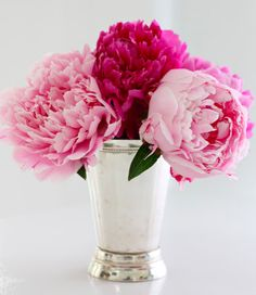 Peonies in mint julep cup: Mint Julep styling