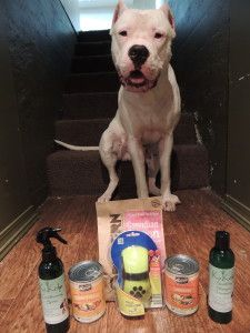 GIVEAWAY!!!  It starts TODAY! Enter to win these awesome pet products!  This giveaway starts today and ends on Monday at 12:00am and a random winner will be drawn. Open to Canadian and U.S residents only.  The items included in this giveaway are  1.)Furminator's – Curry Comb 2.) Two cans of Merrick wet food – Grammy's Pot Pie & Turducken 3.) K9 Kelp's Shampoo and Kelp Conditioner Spritz 4.) Northern Biscuit's Canadian Bacon dog treats  Have fun!