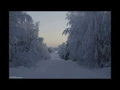 Christmas wishes - YouTube Christmas Wishes, Feelings, World, Youtube, Outdoor, Outdoors, The World, Outdoor Games, Christmas Greetings