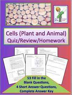 Homework answers science