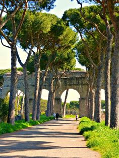 Roman Aqueduct - Create your own pilgrimages at www.CatholicFaithJourneys.com #Rome