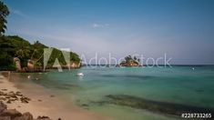 Stock Footage of A static late afternoon timelapse of people swimming, snorkelling, granite rocks with palm trees and a small island at Pointe Au Sel beach, Seychelles. Explore similar videos at Adobe Stock Snorkelling, Small Island, Seychelles, Stock Video, High Quality Images, Palm Trees, Stock Footage, Granite, Adobe