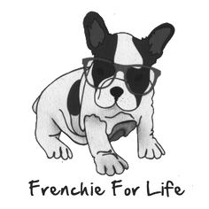 This website is designed for you to find out more information about the lovely french bulldog or frenchie as its also known.