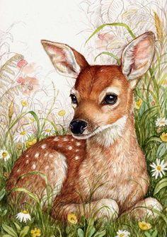 Animal Paintings, Animal Drawings, Art Drawings, Pencil Drawings, Art And Illustration, Watercolor Animals, Watercolor Art, Deer Art, Ouvrages D'art