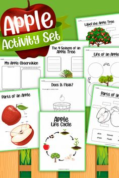 Searching for fun fall activities for your elementary aged kids? Learn about an apple life cycle with these fun printable activity sheets! The life cycle of an apple tree is such a fun activity for fall! This makes for a fun learning activity in your classroom and can be used in your fall themed centers. Fall Preschool Activities, Apple Activities, Fun Activities To Do, Interactive Activities, Teaching Activities, Holiday Activities, Fun Learning, Apple Art Projects, Stem Projects