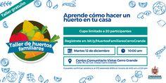 Invita Gobierno Municipal a segundo taller de Huertos Familiares en Vistas Cerro Grande   El Puntero