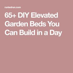 65+ DIY Elevated Garden Beds You Can Build in a Day